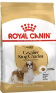 Royal Canin Cavalier King Charles Yetişkin Kuru Köpek Maması 1.5 kg
