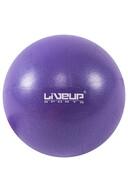 Liveup Mini Pilates Topu 20 cm