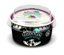 Gündoğdu Frozen Böğürtlenli  Yoğurt 100 gr