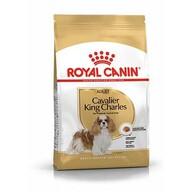 Royal Canin Cavalier King Yetişkin Kuru Köpek Maması 3 kg