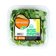 Erüst Semizotu 150 gr