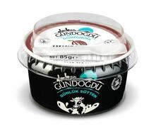 Gündoğdu Kakaolu Dondurma 85 gr