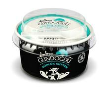 Gündoğdu Frozen Sade Yoğurt 100 gr