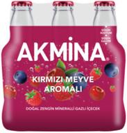 Akmina B+Kırmızı Meyveli6x200 ml