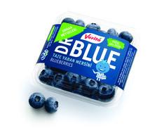Dr. Blueberry Yaban Mersini 125 gr